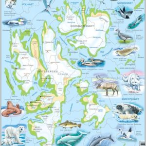 Puslespill Larsen puslespillfabrikk Kart over Svalbard Fysisk med Dyr.