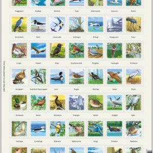 Zoo 2 Puslespill med bilder av dyr, fra Larsen puslespillfabrikk