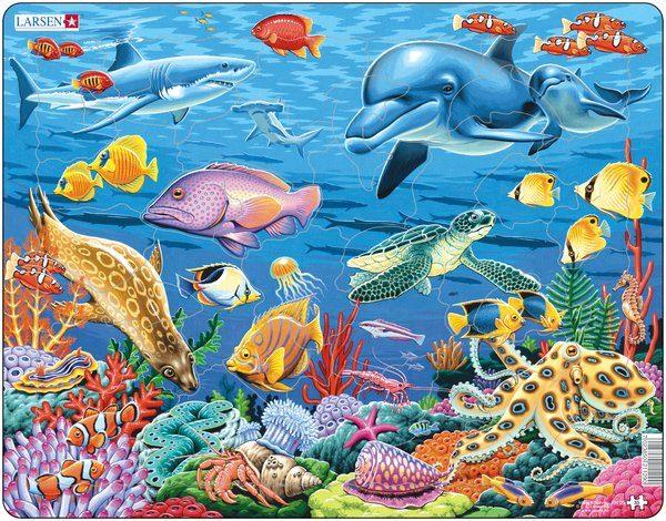 Puslespill Larsen puslespillfabrikk Puslespill fra Korallrev