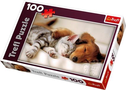 Puslespill søt drøm hund og katt.