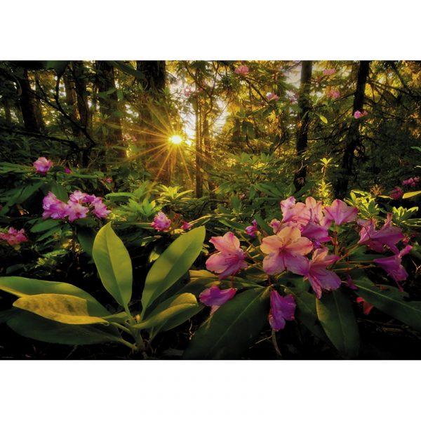 Puslespill Rhododendron 2000 biter / brikker. Motivet er vakkert fra Magic Forests. Pusslespill fra Heye Puzzle.