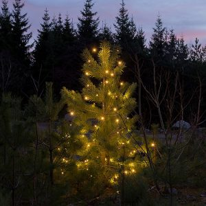 LED juletrelys – 100 stk